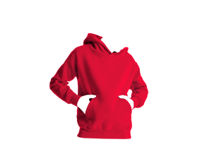Authentic Hooded Sweat Barn