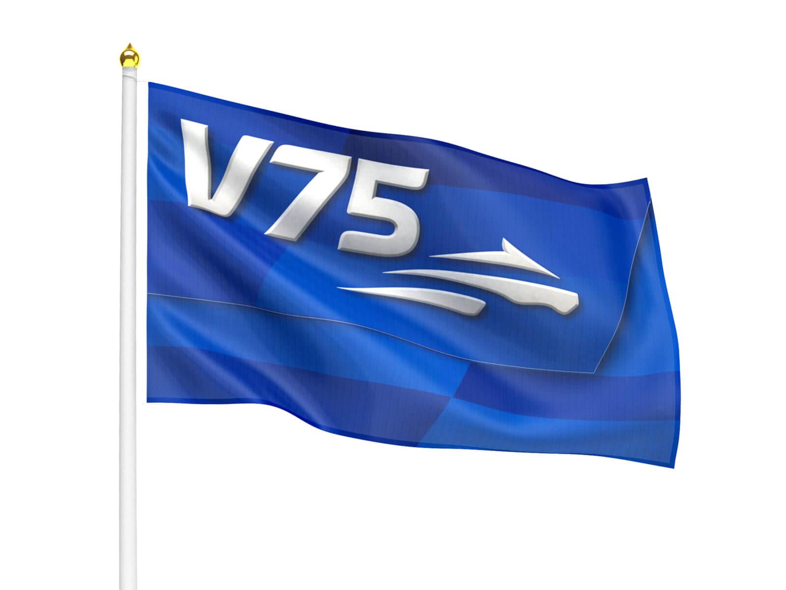 Reklamflagga 240x150 cm