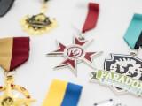 Bild på medaljer för Paradox Interactive
